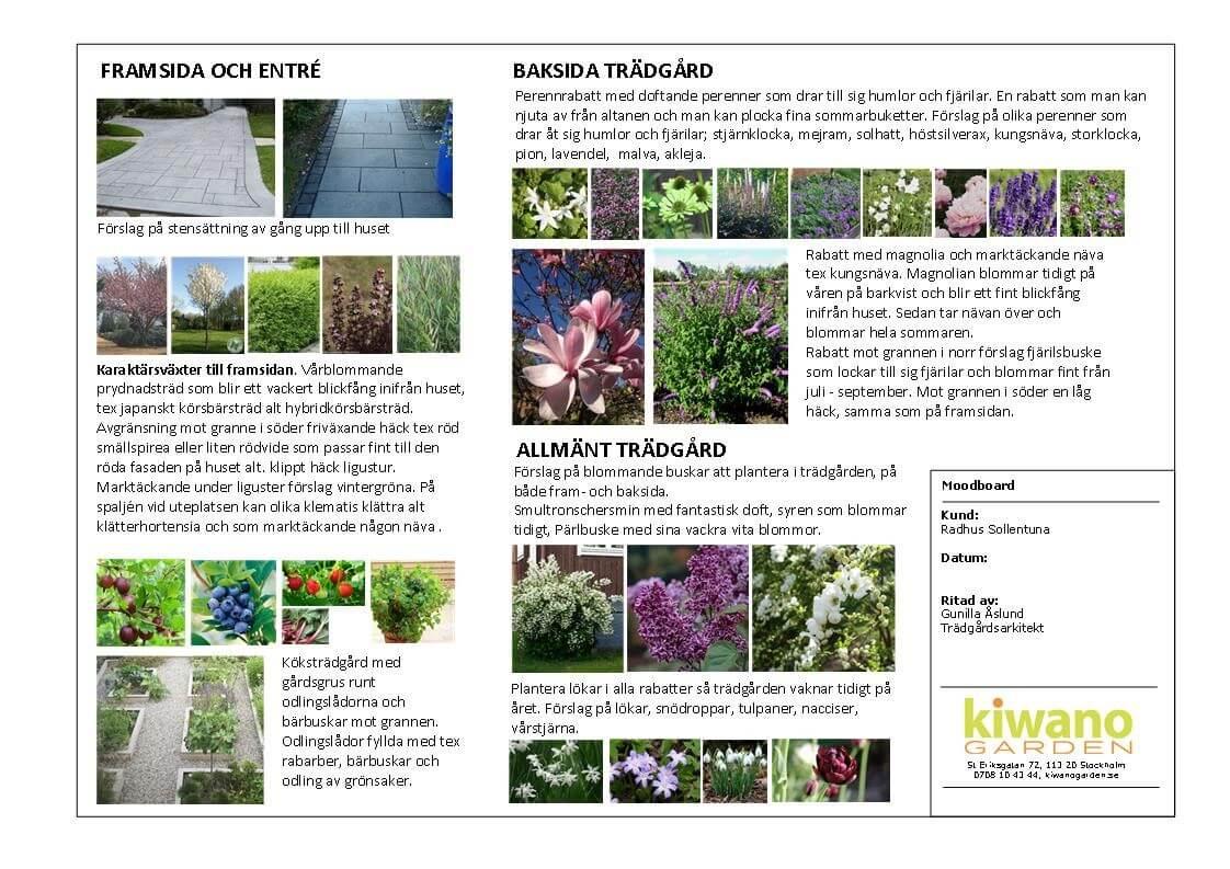 Kiwano Garden